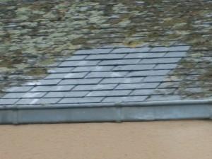 démoussage de toiture Chateau-du-Loir